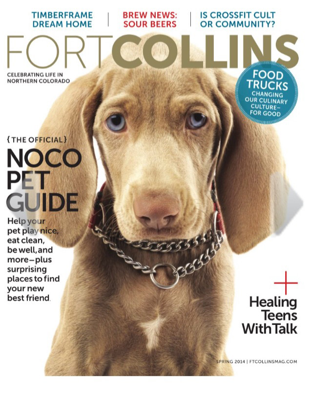 Pet Sitting Feature Fort Collins Magazine