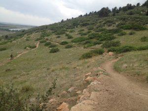 Dog Walking Horsetooth Mountain