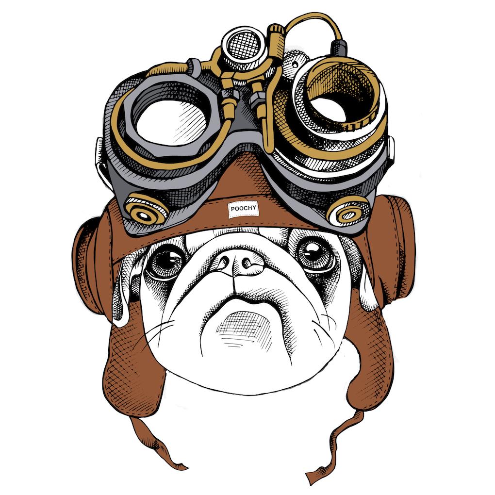 Steam Pug Vision Dog